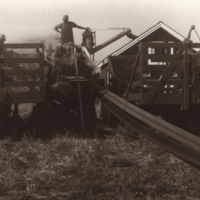 [Threshing on Melfort Research Farm]