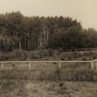 [Men in fenced area on Melfort Research Farm]