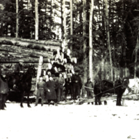 1929 - Load of logs and five horses at Orley, Saskatchewan