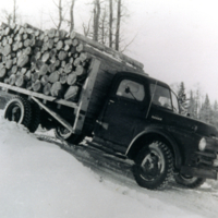Sap Peeled Pulp Wood south of Greenbush (50's)