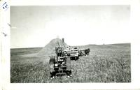Another snap of threshing