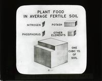 Plant food in average fertile soil