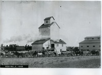 Delivering Grain to Elevator, Regina, Saskatchewan, ca. 1905