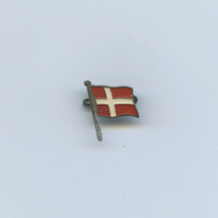 [Norway flag pin]