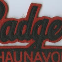 Badgers Shaunavon [sports badge]