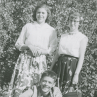 [Three adolescents in front of a hedge]