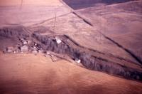 Farm Near P.A. Airstrip