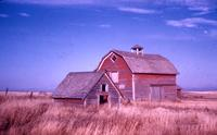 Farm at Meacham, Sask