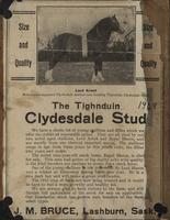 The Tighnduin Clydesdale Stud