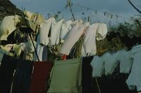 Clothes lines