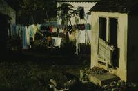 Clotheslines in back yard