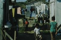 Kid, tomatoes and laundry, Haitian Village [shantytown]