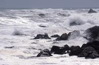 Tasman Sea near Greymouth