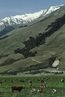Queenstown area, landscapes