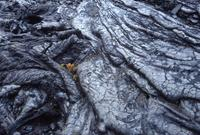 Lava patterns