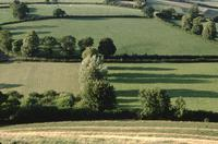 Fields near St. Michael's Tower