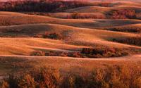 Rolling fields in autumn colors