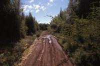 Mud road in village (Meru or Isiolo)