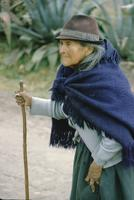 Old woman with stick, century plant