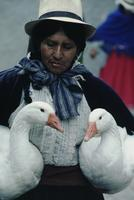 Woman with geese, flower market