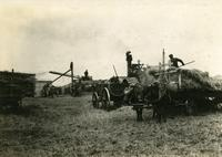 Threshing Wilkie District