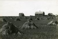 Farm near Moose Jaw with Wheat in Stacks
