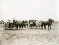 Buggies and Horses in Crescent Park