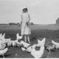 Florence Bekker feeding the chickens on the family farm in Gravelbourg