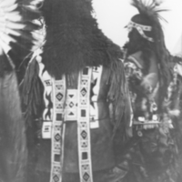The buffalo headdress