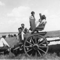 Aboriginal family on a buggy