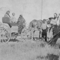 Aboriginals in a horse-drawn carriage