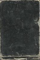 Pocket Diary 1875