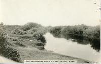 The Assiniboine River At Preeceville, Sask.