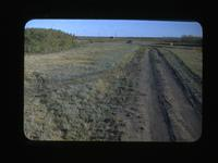 Historic Site - Battle of Mar.26, 1885-Carleton Road to Duck Lake, Sask. Oct.-1948