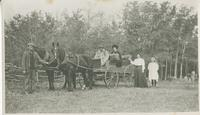 Horse and buggy party