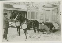 Mr. Ernest Beckton's drivers Tootsie and Empress