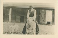Mr. H. Cooke with a sheep and a sheep dog