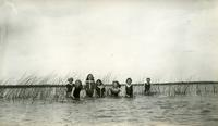 [Seven girls standing in the water]