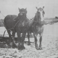 Hauling Ice to Melt for Soft Water in Winter 1930's