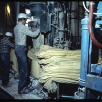 [Men filling bags of flour within flour mill]