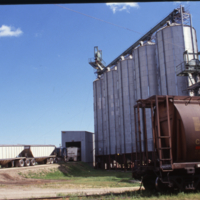 Grain receiving area + day bins, CSP Nipawin