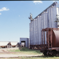 Grain receiving area, Duplicate [Image], CSP Nipawin