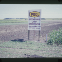 POOL Green Manure Crop Demonstration Product Development Section Farm Service Division