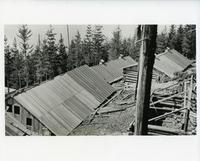 Mount Revelstoke Internment Camp