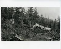 View of Mt. Revelstoke Internment Camp