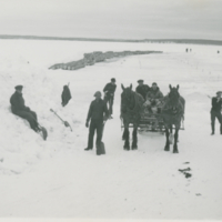 [Team of horses pulling sleigh on frozen lake]